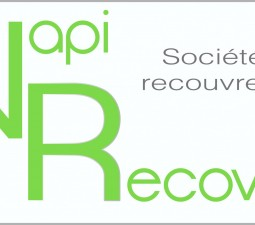 Wapi Recovery : création du logo